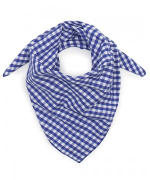 Neckercheif Small Blue Check